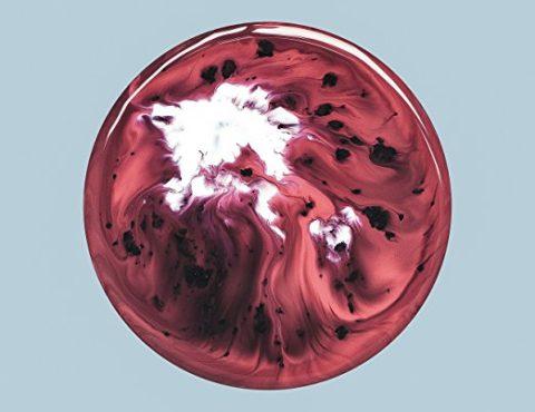 Milky Chance – Blossom [2 LP]