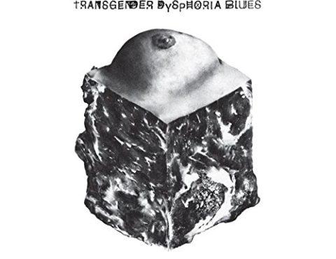 Against Me! – Transgender Dysphoria Blues [LP][Translucent Blue]